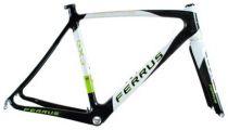 Module Cadre Ferrus GX3 Carbone Noir/Blanc/Vert+ Fourche + Direction