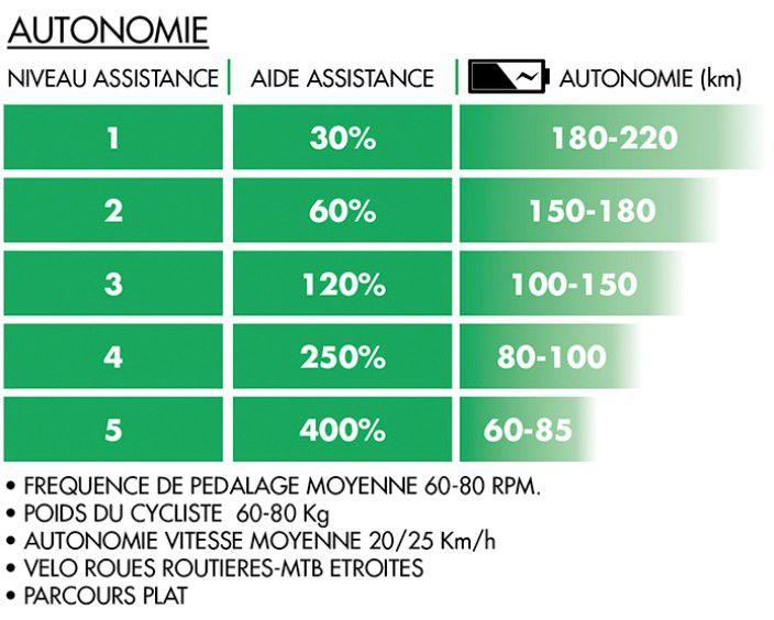 Vélo Assistance Electrique POLINI Route - Patins
